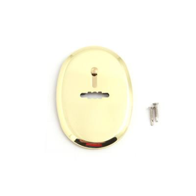Накладка декоративная Apecs DP-11-S-G-shutter